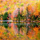 Fall Morning Reflection by MPICS
