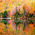 Fall Morning Reflection by MPICS