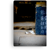 Xitang Cat Chilling Out Canvas Print