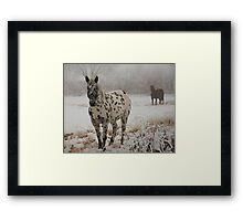 I Spotted This Guy... Framed Print