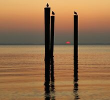 Sunset On The James River by Amy Jackson