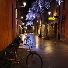 Reggio-Emilia, a Street View with Bicycles at Night. Emilia-Romagna, Italy 2009 by Igor Pozdnyakov