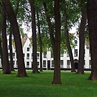 The Beguinage in Bruges by polanri