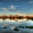 Muloorina  Water Hole by Jeff Catford