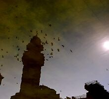 The Afternoon Flight by Emoto