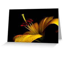 Lovely Lily. Greeting Card