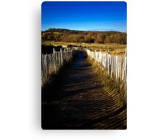 Slippery Path Canvas Print