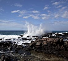 Beauty Of Lanai by Craig Durkee