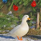 Christmas duck by relayer51