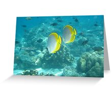 Philippine Butterflyfish Greeting Card
