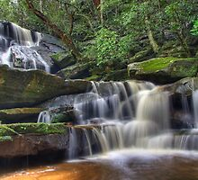 Bottom Somersby Falls by Mike Salway