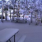 A FROSTY MORN - HDR by Larry Trupp