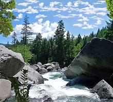 1473-XL-Boulder Creek by George W Banks