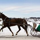 One Horse Open Sleigh by Mark Van Scyoc