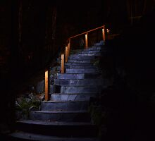 Slate Stairs with LED Lighting by Dan Hyatt