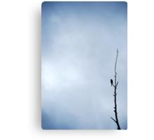 Nature's simplicity Canvas Print