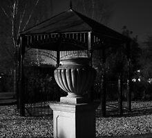 writtle garden by KurtTommyMoore