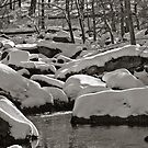 Snow on rocks by Dave Parrish