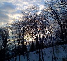 Evening After Big Snowstorm (2) by SylviaS