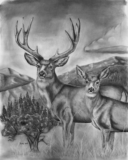 Idaho's Mule Deer Heaven by Russ Smith