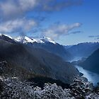 Wilmot Pass - Doubtful Sound, South Island, New Zealand by Leigh Voges