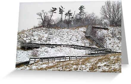 Winter Stairway by BarbL
