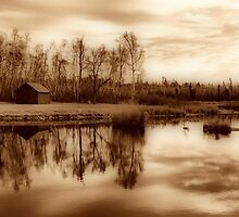 Whiteshell River at Reed Falls by Vickie Emms
