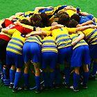 Teamwork by Ruben D. Mascaro