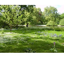 Summer Blanket in St James' Park Photographic Print