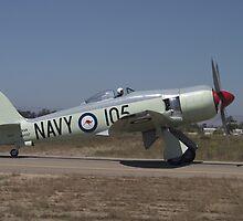Hawker Sea Fury FB MK II by Cathy L. Gregg