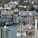 View from the Looe by ellismorleyphto