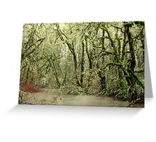 Forest Flood Greeting Card
