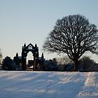 Gisborough Priory 2 by dougie1page2