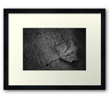 Such A Lonely World Framed Print