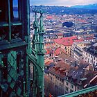 Geneve. A View of the City from the Tower of the Cathedral of St. Peter. Switzerland 2005 by Igor Pozdnyakov