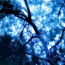 Composition in Blue With Subtle Touches of Green: Abstracted Branches and Sky by Ivana Redwine