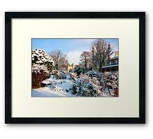 City garden Framed Print