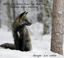 Merry Christmas to All... from Jackson Hole, Wyoming by A.M. Ruttle