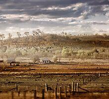 Heartland by Holly Kempe