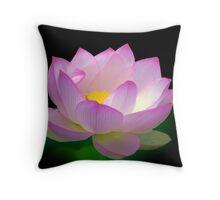 Blissful - Lotus, Sydney Royal Botanic Gardens, NSW Throw Pillow