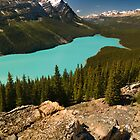 Peyto lake, Banff National Park by alopezc72