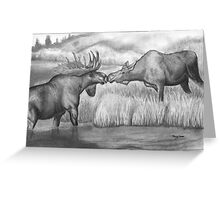 Two Moose Pair Off Greeting Card