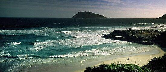 south-west coast of Western Australia by nadine henley