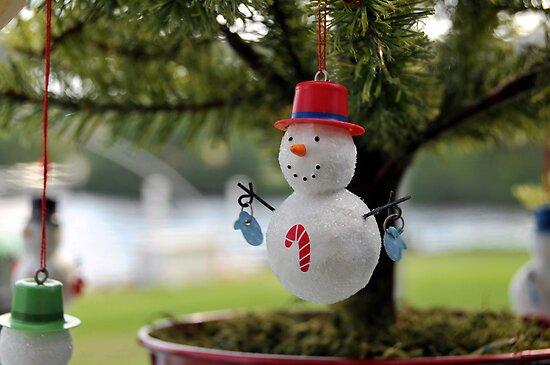 Have a Holly Jolly Christmas by carlosporto