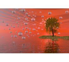 I dream of trees #2 Photographic Print