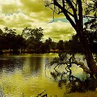 Bassendean River ! by H.G  QualityPhotography