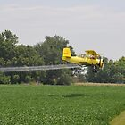 Spraying Beans. by SherryLynn58
