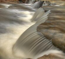 Falls on Bear Branch by David Allen