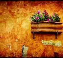 Vase by Silvia Ganora