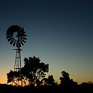 dusk on farmland at Forest in nor west Tasmania , Australia by phillip wise